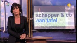Schepper & Co - Nieuw Ontslagrecht
