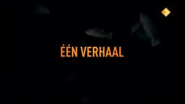 De Geheimen Van Barslet - Roelie