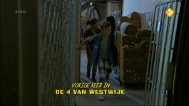 De Vier Van Westwijk - De Verdwijning Van Bo Monti - De Blauwe Bloes