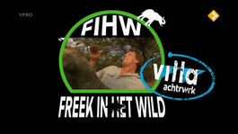 Freek In Het Wild - Krokodillen