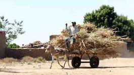 Hoezo Armoede?: Land Rush - Land Rush