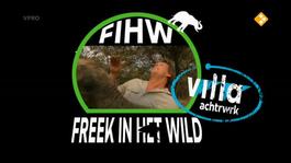 Freek In Het Wild - Vogelspin