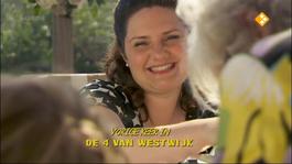 De Vier Van Westwijk - De Verdwijning Van Bo Monti - De Schuilplaats