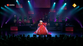 Cabaret Bij De Vara - Karin Bloemen: Absobloodylutely Bloemiliciously Fanf*ckintastic