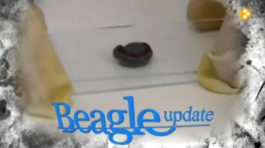 Beagle Updates - Parasieten