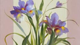Schilderen Met Gary Jenkins - Nederlandse Iris