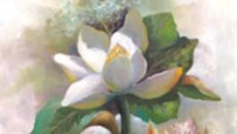 Schilderen Met Gary Jenkins - Magnolia