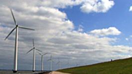 De Duurzame Weg - Drie Radicaal Duurzame Bedrijven - De Duurzame Weg - Drie Radicaal Duurzame Bedrijven