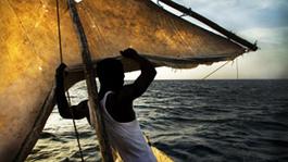 Wavumba, Zij Die Naar Vis Ruiken - Wavumba