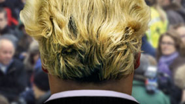 Teledoc Wilders, the movie
