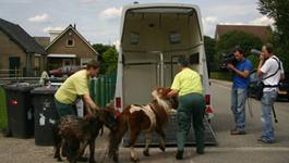 Dierenbeschermers