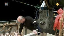 De Urker Vissers - De Urker Vissers