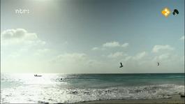 Onder Elkaar - Bonaire -zwartkijkers