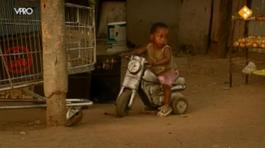 Van Dis In Afrika - Ontworteling En Traditie - Van Dis In Afrika
