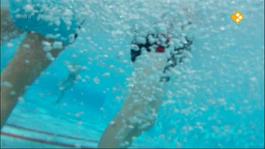 Het Klokhuis - Zwemwater
