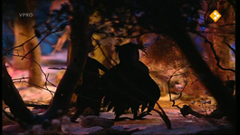 Verhalen Van De Boze Heks - De Tent
