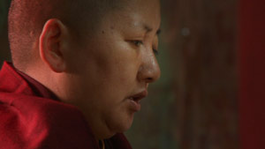 Khandro - Vrouwelijke Tibetaanse Meester - Khandro Rinpoche