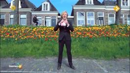 Sterren Nl Top 20 - Sterren.nl Paradeplaat