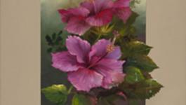 Schilderen Met Gary Jenkins - De Hibiscus