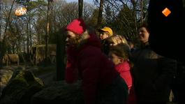 Oudste Familiebedrijven Van Nederland - Burgers' Zoo