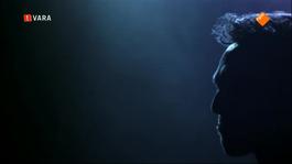 Javier Guzman - Javier Guzman: Oorverdovend