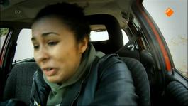 Checkpoint - Checkpoint Revanche: Auto Rijden