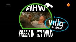 Freek In Het Wild - Kamp/luiaard