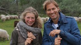 De Wandeling - Daphne Van Zomeren Werd Schaapsherder