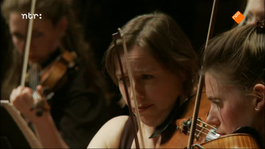 Ntr Podium - Ntr Podium: Het Geheim Van Amsterdam Sinfonietta
