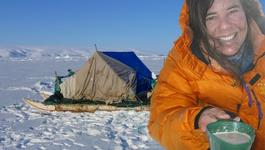 Klimaatjagers - Groenland