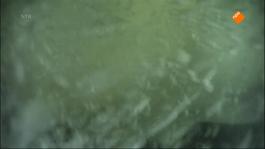 Het Klokhuis - Auto Te Water