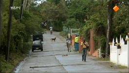 Caribisch Nederland, 3 Jaar Later - Sint Maarten