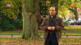 Katholiek Nederland Tv - 29 Oktober 2013