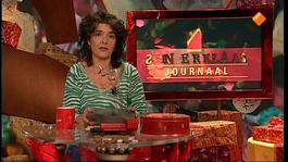 Het Sinterklaasjournaal - Maandag 11 November 2013