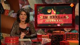 Het Sinterklaasjournaal - Dinsdag 12 November 2013