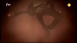 Op Zoek Naar Zorro - Op Zoek Naar Zorro