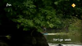 Wie Is De Mol? - Femmes Fatales