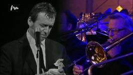 Tribute Toon Hermans - Tribute Toon