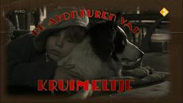 De Avonturen Van Kruimeltje - Straatschoffie