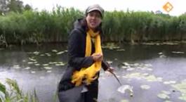 De Buitendienst Van Nieuws Uit De Natuur - Water