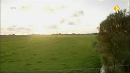 Vrijland - Compilatie