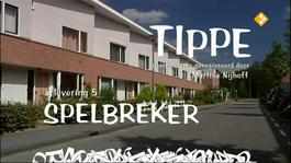 Tippe - Spelbreker