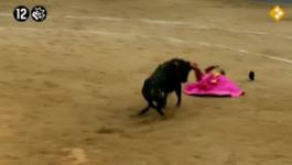 De Slag Om Brussel - Stierenvechten