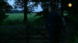 Willem Wever Flits - Kaas - Willem Wever Flits