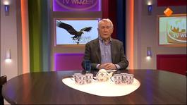 Max Tv Wijzer - Peter Faber
