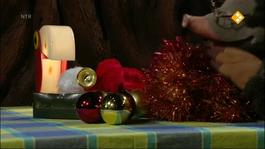 Koekeloere - Kerstbezem-boom