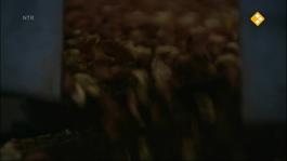 Het Klokhuis - Pindakaas
