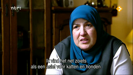 De Ijzeren Vogel - Bejaardenhuis Is Net Een Asiel Voor Katten En Honden - Herhaald Op 18 Maart 2012
