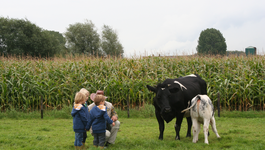 Koek & Ei - De Lieve Melkfabriek
