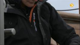 Beagle Updates - Plankton
